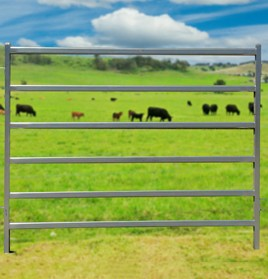Cattle-Panel