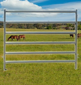 horse-panel