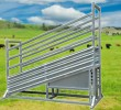 Heavy Duty Loading Ramp (Adjustable)