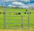 Cattle Gate 2100
