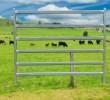 Heavy Duty Cattle Panel