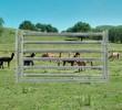 Goat/Alpaca Gate 2100