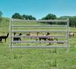 Goat/Alpaca Yard Panels