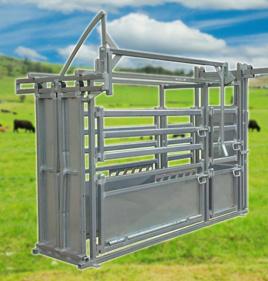 Heavy Duty Vet Cattle Crush