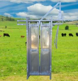 cattle-head-bail