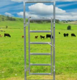 cattle-man-gate