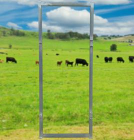 Cattle Race Bow