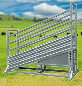cattle-ramp