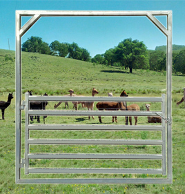 Goat/Alpaca Gate 2100 High Frame