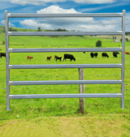 Heavy Duty Cattle Panel