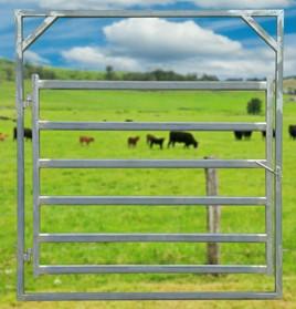 hd-cattle2100