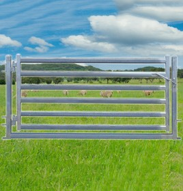 sheep-yard-gate2100