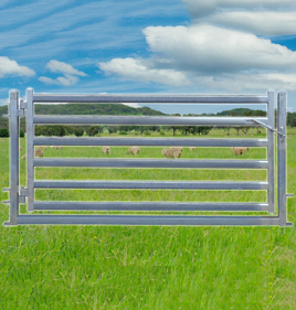 Sheep Yard Gate 2100