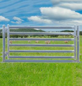 Sheep Yard Gate 2100