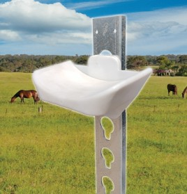 Horse Show Jump Cups