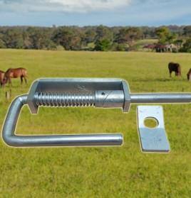 SLAM HORSE
