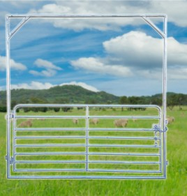 Economy Sheep Yard Gate
