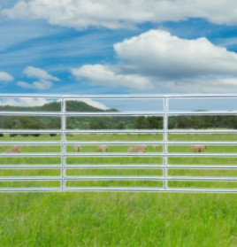Economy Sheep Yard Panel